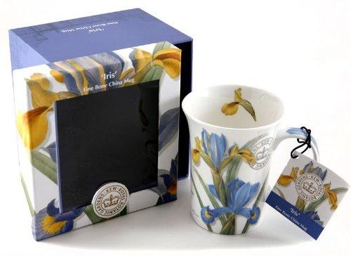 Small Iris Garden - Royal Botanical Gardens Kew Iris Fine Bone China Mug In Gift Box Creative Tops