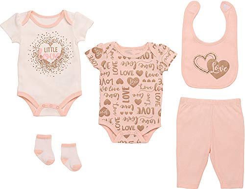 Accent Three Roses - Mini B. by Baby Starters 5-Piece Layette Set- Pink and Rose Gold/Little Love, 3-6 Months