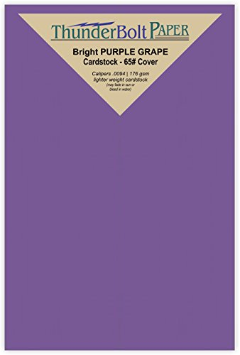 200 Bright Purple Grape 65# Cardstock Paper 3'' X 5'' (3X5 Inches) Index|Recipe Card|Photo|Frame Size - 65Cover/45Bond Light Weight Card Stock - Bright Printable Smooth Paper Surface by ThunderBolt Paper