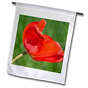 PS Flowers - Beauty of Red - Tulip Flower - Spring Floral Print - 18 x 27 inch Garden Flag (fl_54516_2)