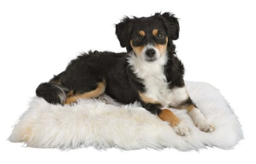 Trixie Genuine Sheepskin Cushion For Cats & Dogs