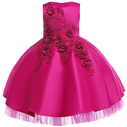 Baby Girls Infant Embroidery Dress Wedding Toddler High-end Dress Flower Dress,D0952-Rose,9 ()