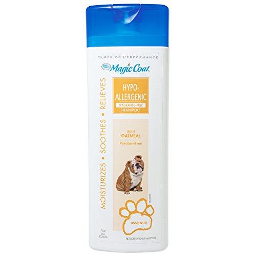 Four Paws 100526418 Magic Coat Unscented Hypoallergenic Dog Shampoo with Oatmeal, 16 oz