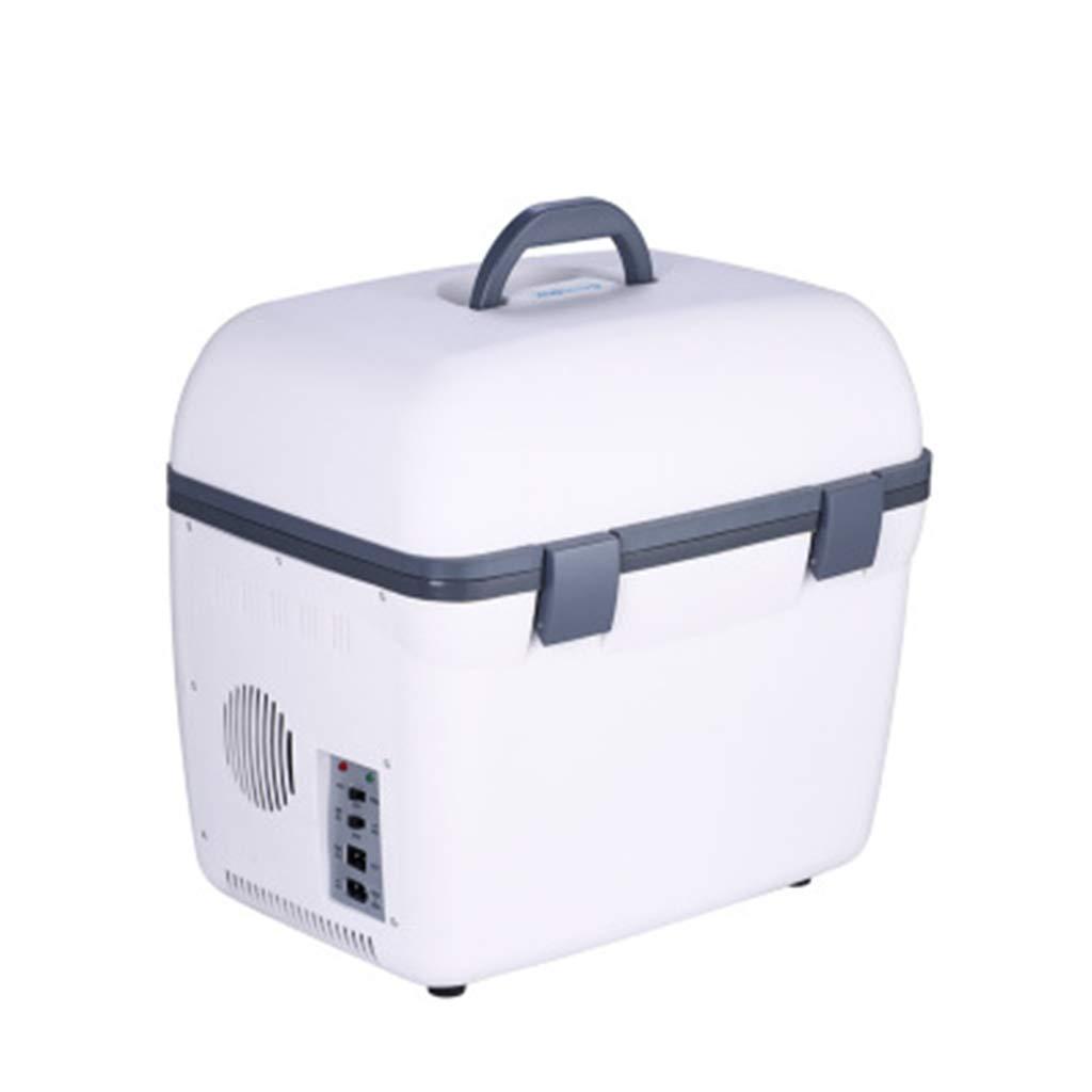 Amazon.es: Coche Del Refrigerador Del Coche Con 18L Mini ...