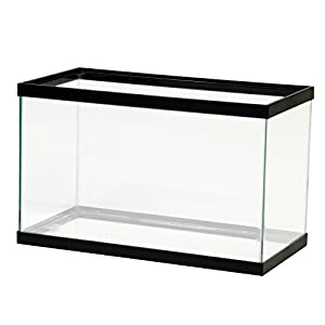 Aqueon 10 Gallon Black Aquarium