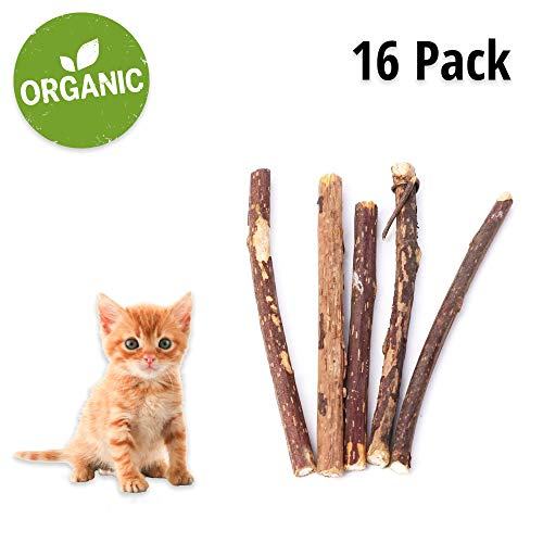 NAZVA Pets Supplies Silver Vine Matatabi Catnip Sticks - 16 pcs - Natural Toothbrush Dental Care Cats Chew Toy and Treat - 100% Organic