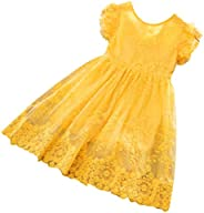 Vincent&July Little Girls Fly Sleeves Bow Flower Lace Casual Birthday Dress with Tutu S