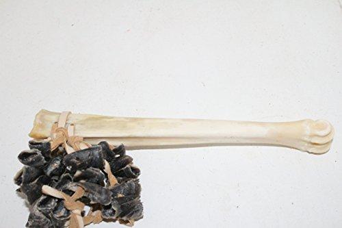 Deer bone, dew claw shaker, rattle. a887, ornamental ()