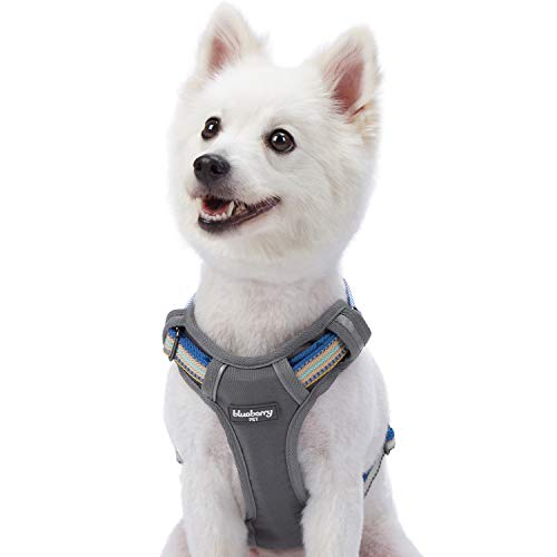 "Blueberry Pet 9 Colors Soft & Comfy 3M Reflective Multi-Colored Stripe Padded Dog Harness Vest, Chest Girth 17.5""-21"", Neck 14.5""-20.5"", Ginger & Blue, Small, Mesh Harnesses for Dogs"