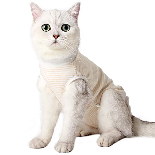 Heywean Cat Professional Surgical Recovery Suit for Abdominal Wounds Skin Diseases, After Surgery Wear, E-Collar Alternative for Cats, Home Indoor Pets Clothing