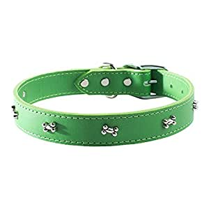 "OmniPet Signature Leather Dog Collar with Bone Ornaments, Kiwi, 16"""