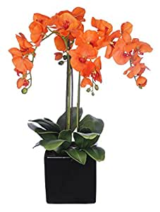 House of Silk Flowers Artificial Triple-Stem Phalaenopsis Orchid Arrangement, Paprika Orange