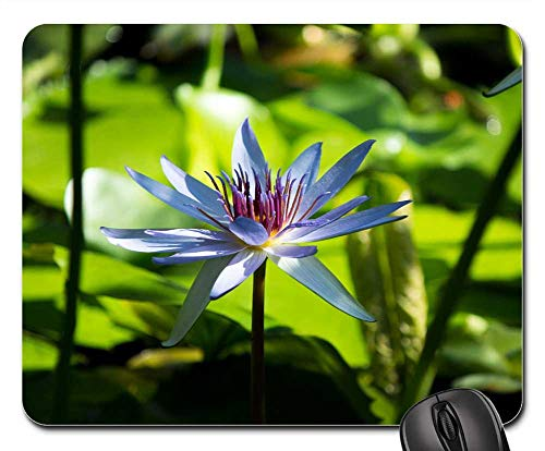 Mouse Pad - Flower Zen Tranquil Lotus Lotus Flower Massage Spa