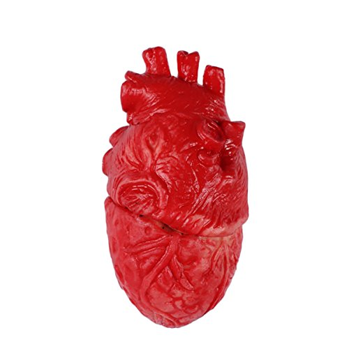 wellin international Horrifying Fake Heart Halloween Props, Terrifying Eerie Party Props]()