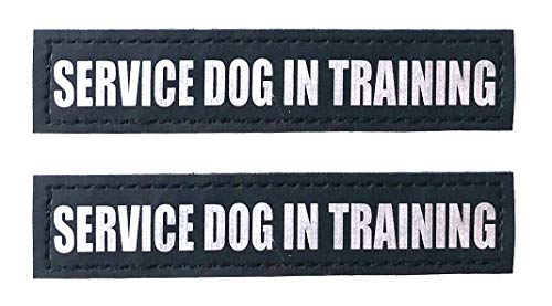 Albcorp Reflective Service Dog In Training Patches with Hook Backing for Service Animal Vests /Harnesses Small (4.6 X 1) Inch