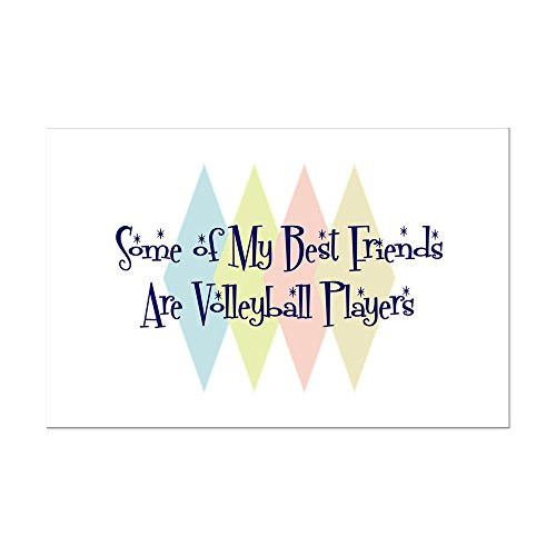 CafePress - Volleyball Players Friends - Mini Poster Print