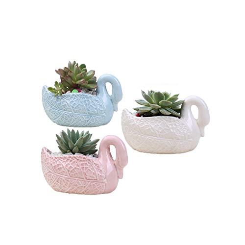 Youfui Home Decor Pot, Succulent Planter Flowerpot Decor for Home Office Desk (3pcs Swan Decor) (Swan Pot)