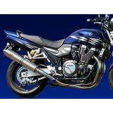 アールズギア(r's gear) フルエキゾーストマフラー ワイバン シングル チタン XJR1300 (07-) WY08-01TI