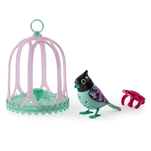 Digi Birds Bird with Bird Cage - Black & Pink
