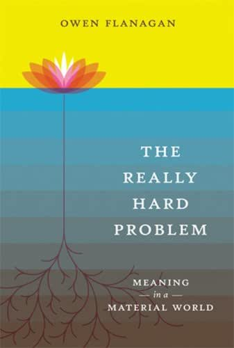 The Really Hard Problem: Meaning in a Material World (A Bradford Book)