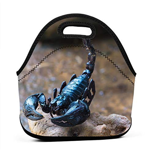 LKJDAD Scorpion Lunch Bag, Thick Insulated Lunchbox Bags,Tote Box with Zipper Closure for Kid Travel Picnic Office