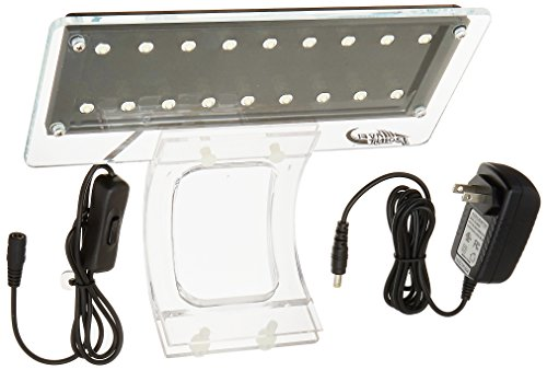 Aqua Illumination Led Lighting - 7