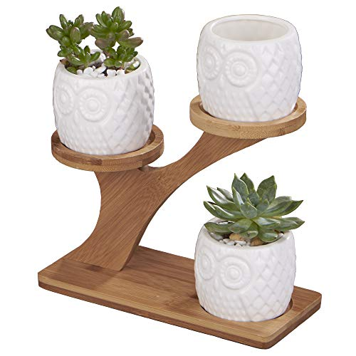 FLOWERPLUS Planter Pots Indoor, 3 Pack 2.75 Inch White Ceramic Decorative Small Owl Succulent Cactus Flower Plant Pot with Tree Tier Bamboo Stand for Garden Kitchen Home Office Desk Decorations