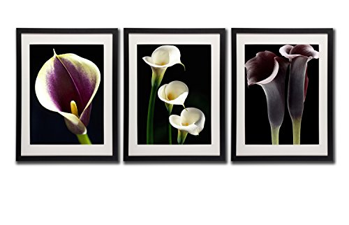 Calla Lily Wall Decor Art Prints Posters 18x24 Black Frame White Mat Gorgeous Purple White Flowers Artwork Pictures Printed On Canvas 3 Piece Still Life Of Floral Photos For Kitchen Home Decorations