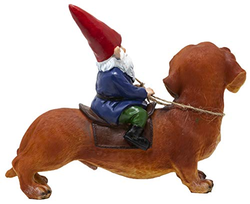 Funny Guy Mugs Gnome and a Dachshund Garden Gnome Statue- Indoor/Outdoor Garden Gnome Sculpture for Patio, Yard or Lawn by Funny Guy Mugs (Image #2)