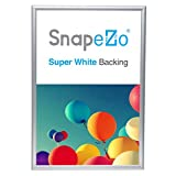 SnapeZo Photo Frame 13x19 Inch, Silver 1' Aluminum Profile, Front-Loading Snap Frame, Wall Mounting, Sleek Series