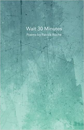Wait 30 Minutes: Poems by Patrick Roche: Patrick Roche