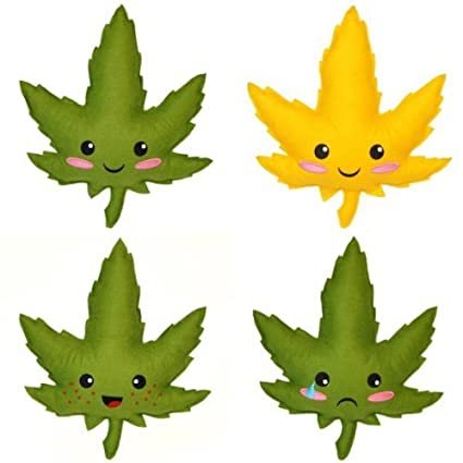 Buy Set Of All 4 Highdy - OG, JR, Kush, and Busted Online at Low