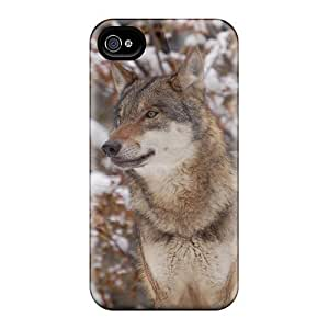 High-quality Durability Cases For Iphone 6(red Wolf Inthe Woods)