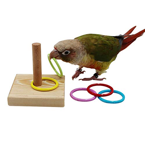 QBLEEV Bird Toys, Bird Trick Tabletop Toys, Training Basketball Stacking Color Ring Toys Sets, Parrot Chew Ball Foraing…