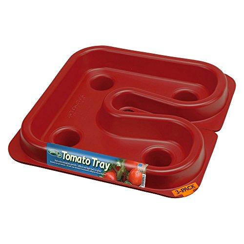 Tomato Tray - Gardeneer Tomato Tray