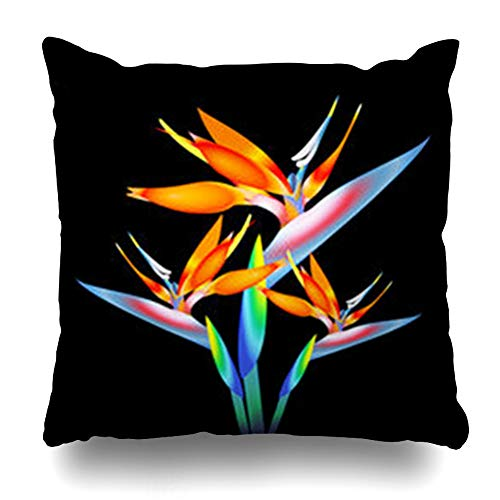 - Pandarllin Throw Pillow Covers Orange Blue Leaf Bird Paradise Flower Tropical Nature Season Branch Plant Floral Garden Flowers Cushion Case Home Decor Sofa Square Size 18 x 18 Inches Pillowcases