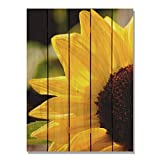 Cheap Gizaun Art Yellow Sunflower 28-Inch by 36-Inch Inside/Outside Wall Art, Full Color on Cedar
