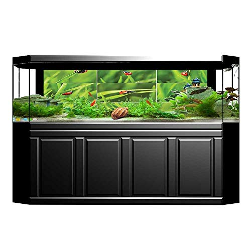 UHOO2018 Fish Tank Background Ladybug Over Fresh Grass Collection in Divided Collage Vibrant Life Lawn Foliage Theme Pictures PVC Decoration Paper Cling Decals Sticker ()