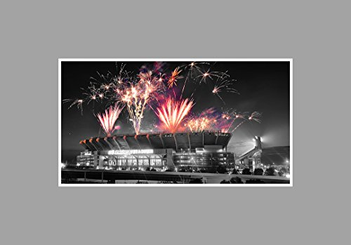 firstenergy-stadium-nfl-touch-of-color-36x20-matte-poster-print-wall-art-toc