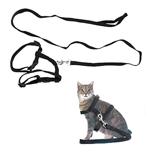 MR.Jiang Adjustable Pet Cat Kitten Lead Leash Harness Set Nylon Collar Safty Belt Training Black