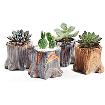 Cactus Succulent Planter Flower Pot Garden Office Decor Resin Tree Root #6