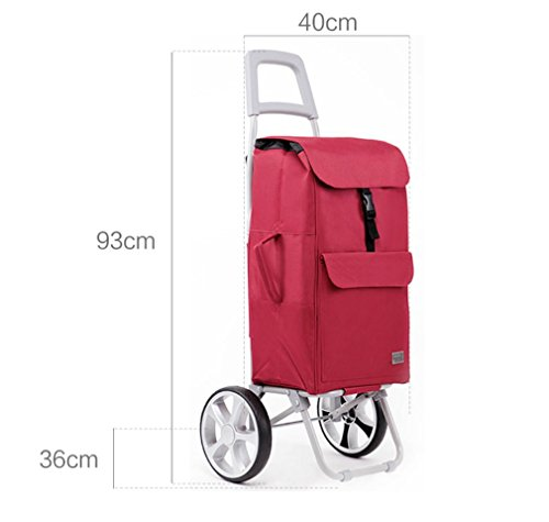 Amazon.com: Shopping Cart 2 Wheel Collapsible Utility Cart wit Wheel Bearings Lightweight Shopping Trolley Easy to Use: Sports & Outdoors