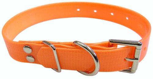 6-Inch Plastic Coated Nylon Webbing Dog Collar, Safety Orange ()