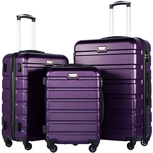 Purple Luggage Sets - 8