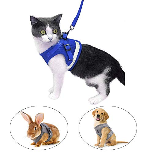 Kamots Beauty Escape Proof Cat Harness and Leash for Walking Adjustable Soft Mesh Pet Vest with Lead for Kitten Puppy Rabbit -(Blue,XS)