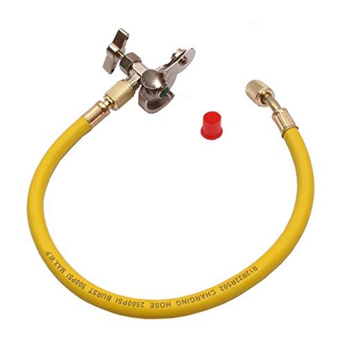r12 hose - 1