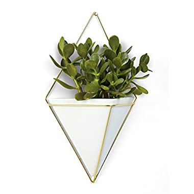 Umbra Trigg Hanging Planter Vase & Geometric Wall Decor Container - Great For Succulent Plants, Air Plant, Mini Cactus, Faux Plants and More, White Ceramic/Brass