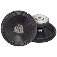 Pyle Ppa12 12 700w Car Audio Professional Dj Subwoofer Sub 700 Watt