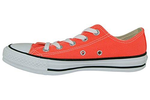 Converse Taylor Star Chuck All Unisex Grey Adult's q84Aqx6w