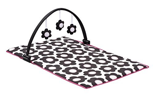 New Love NEW! Evenflo Portable BabySuite 300 with Dual-Pocket Fabric Console (Marianna) by Prathai (Image #1)